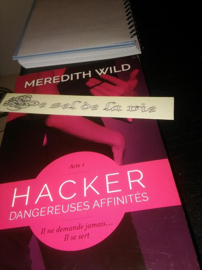 Hacker T1 dangereuses affinités.jpg