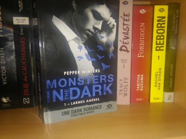 Monsters in the dark T1 larmes amères.jpg