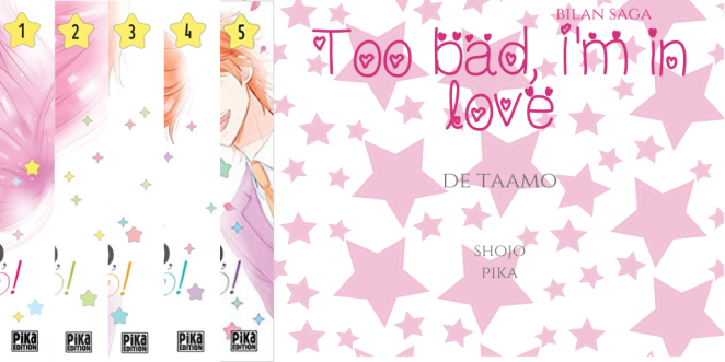 Too bad, I'm in love - Bilan saga