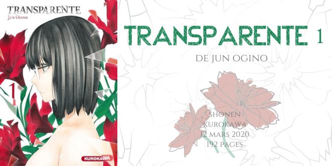 Transparente #1