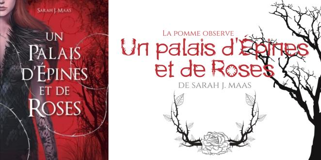 La Pomme observe - Un palais d'Épines et de Roses