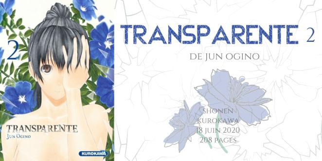 Transparente #2